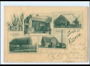 XX13061-3079/ Gruß aus Essern Windmühle Molkerei Gasthaus AK 1901