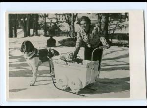 S2599/ Königin von Niederlande 1939 Foto AK Kinderwagen auf Kufen, Bernhardiner