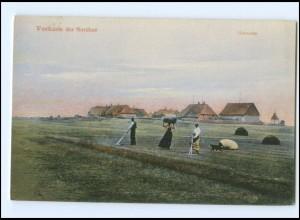 Y18789/ Westküste der Nordsee Heuernte Landwirtschaft AK ca.1910