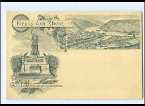 XX13689/ Gruß vom Rhein Niederwaldenkmal gelaufen nach Constantinople 1896 AK