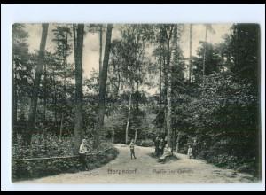 Y18853/ Hamburg Bergedorf Partie im Gehölz AK 1912