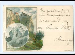 Y18963/ Schloß Bronnen und Schloß Werenwag Litho AK Verlag: Velten 1897