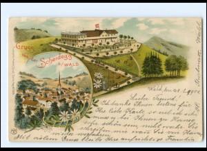 S2663/ Gruß von der Scheidegg b. Wald Litho Ak 1901 Schweiz