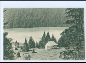 Y19129/ Baile Tusnad - Tasnadfürdo Rumänien AK 1924