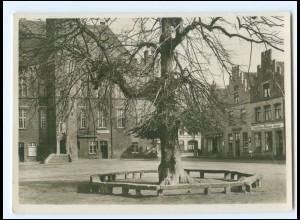 V1698-4192/ Kalkar Marktplatz Gerichtslinde Baum Foto AK ca.1938