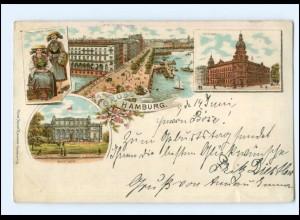 XX13615/ Gruß aus Hamburg Vierländerin Litho AK 1898