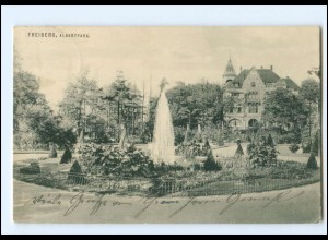 Y19347/ Freiberg Sa. Albertpark AK 1933