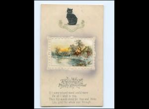 Y19494/ Christmas Weihnachten Katze Kater Litho Prägedruck AK ca.1912
