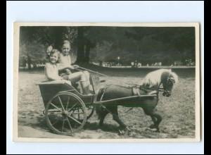 Y19422/ Ponykutsche Kinder Foto AK ca.1940