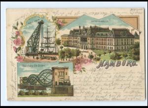 XX13764/ Gruß aus Hamburg Litho AK 1901