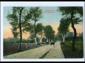 XX13862-2107/ Landstraße vor Vahrendorf Kühe AK 1916