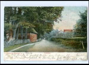 XX13864-2107/ Ehestorf bei Harburg Dorfstraße AK 1906