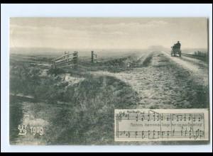 XX14076/ Woyens AK 1909 Nordschleswig