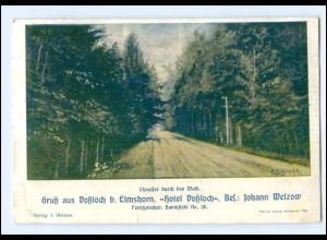 XX14073/ Voßloch bei Elmshorn Chaussee durch den Wald AK 1912