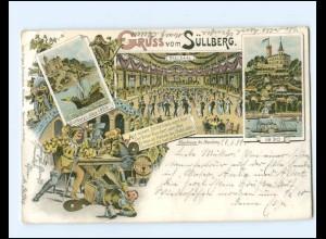 XX14260/ Gruß vom Süllberg Hamburg Blankenese Litho AK 1899