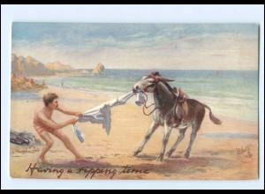 XX14601/ Tuck`s Postcard AK A Pipping Time - Esel am Strand Badeleben ca.1910
