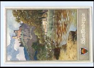 V1855/ Deutscher Schulverein AK Nr. 176 Senftenberg N.-Ö. ca.1914
