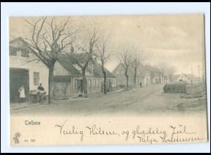 S2783/ Töllöse Dänemark AK 1906