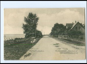 S2793/ Humlebaek Pensionat Skovly AK Dänemark 1914