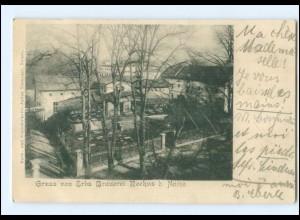 S2820/ Rochus bei Neisse Erbs Brauerei AK 1903 Schlesien