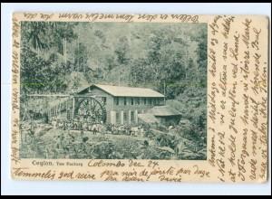 S2851/ Ceylon Tea Factory 1905