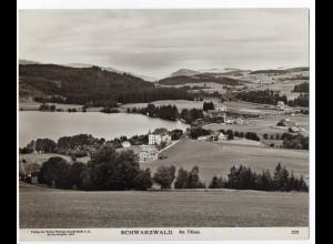 c763/ Schwarzwald Am Titisee NPG Foto 1904 24 x19,5 cm
