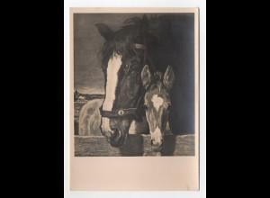 Y9889/ HDK Nr. 469 Haus der Deutschen Kunst AK Pferde ca.1938