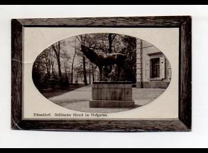 Y11059/ Düsseldorf Brüllender Hirsch im Hofgarten Unikum AK Passepartout 1909