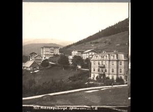 AK-0494/ Riesengebirge Schlesien Stereofoto ca.1905