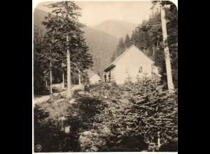 AK-0499/ Riesengebirge Lange Grund mit Gelergucke Schlesien Stereofoto ca.1905