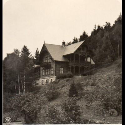 AK-0517/ Wölfelsgrund Prinzl. Sommerquartier Schlesien NPG Stereofoto ca.1905