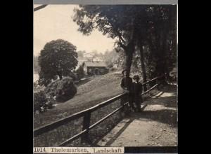 AK-0687/ Thelemarken Norwegen Stereofoto ca.1905