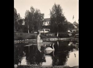 AK-0701/ Lillehammer Stadtpark Norwegen NPG Stereofoto ca.1905