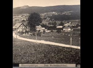 AK-01043/ Riesengebirge Das Weissbachtal Schlesien Stereofoto ca.1905