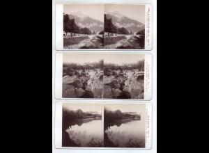 AK-2146/ 3 x Savoyen Frankreich Stereofoto v Alois Beer ~ 1900
