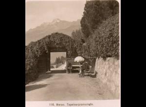 AK-2244/ Meran Tapeinerpromenade Südtirol Italien NPG Stereofoto ca.1905