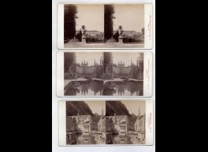AK-2313/ 3 x Salzburg Stereofoto v Alois Beer ~ 1900