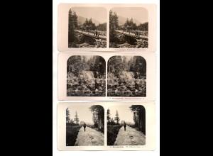 AK-2304/ 3 x Riesengebirge Schlesien NPG Stereofoto ca.1910