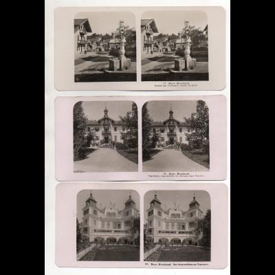 AK-2546/ 6 x Am Tegernsee Bayr. Hochland NPG Foto Stereofoto ca.1905