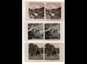 AK-2682/ 12 x Central-Himalaya Kumaon, Sikhim NPG Foto Stereofoto ca.1905