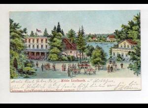 U8724-046/ Naunhof Mühle Lindhardt Reliefdruck AK 1905