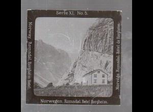 AK-2697/ Nürnberg Hans Sachs Monument altes Glasnegativ ca.1900/10
