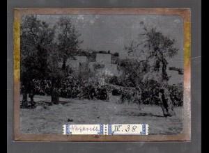 Y15535/ Altes Glasnegativ Nazareth Palästina ca.1900