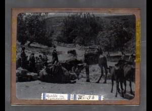 Y15532/ Altes Glasnegativ Samarien Samaria alte Quelle Westjordanland Israel