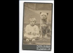 S2074/ CDV Foto Kind mit Bulldogge Hund Atelier Harder in Lunden ca.1900 Bulldog