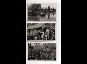 Y15070/ 3 x Foto AK Delta del Parana Argentinienca.1935