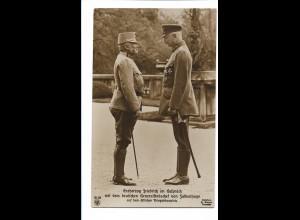 V144/ Erzherzog Friedrich und von Falkenhayn NPG Foto AK 1. Weltkrieg
