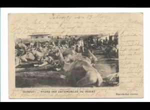 Y17405/ Djibouti Dschibuti Ostafrika AK 1905 Kamele