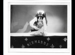 C3878/ Hermanus Artist Akrobat Variete Zirkus Foto 15 x 12 cm ca.1955