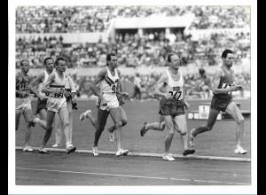 C3901/ Olympiade Rom 1960 1500m Endlauf Foto 24 x 18 cm